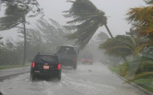 How to protect your business during cyclone season?